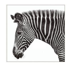 Serviette Zebra