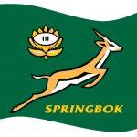 Springbok Flag 90×70